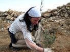 Volunteering in the Middle East: Solidarity in Action. EVS in Palestine 2009